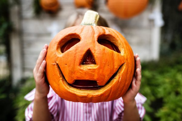 Pumpkin Patches and Fall Festivals in and around Rio Rancho